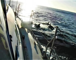 escorted by dolphins on the way to Las Palmas