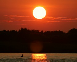 Swan Creek, Chesapeake Bay.