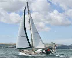 Tradewind 33 for sale