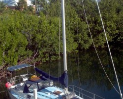 Delphinus, My first sail boat.