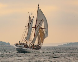 October race in the archipelago of Stockholm