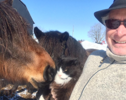 Farm I volunteered on for a winter. Barn cat Hector and I became best buddies. Love animals.