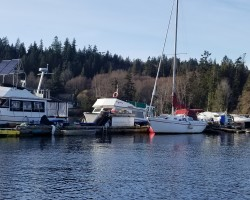 """My """"Collection"""".  Lol!  Looking to fix up both the 28' Crown sailboat and the 31' locally custom built trawler this summer and put them up for sale."""