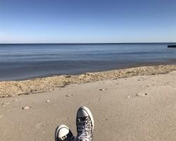 Sunshine, Sea, and Wild Air 2021
