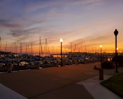 Richmond Marina, perfect view for a fun filled evening
