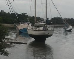 Sarasota, after a storm.